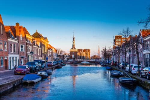 Ongediertebestrijding Alkmaar