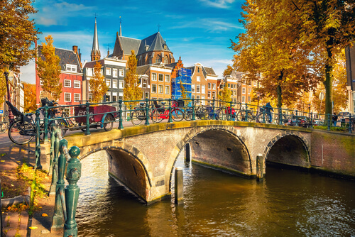 Ongediertebestrijding Amsterdam