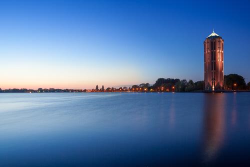 Ongediertebestrijding Aalsmeer
